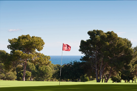 Golf Courses in Costa Blanca
